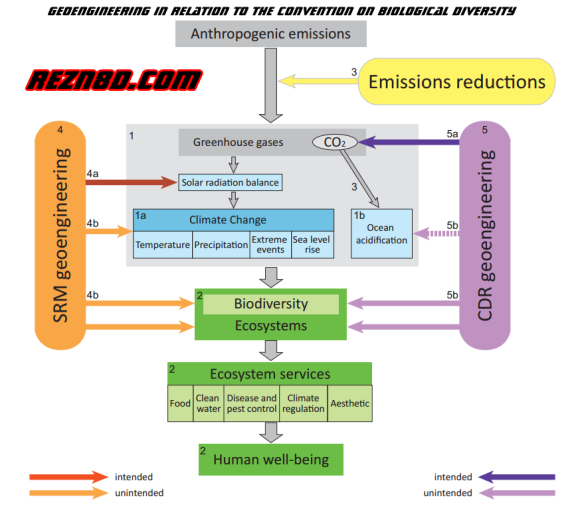Geoengineering-in-relation-to-the-Convention-on-Biological-Diversity